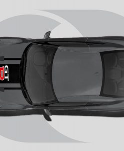 Nissan GTR Roof Graphics GT-R Stripe