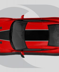 Nissan GTR Roof Graphics Tapered Lines