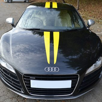 audi r8 yellow stripes front